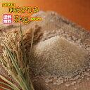 送料無料 北海道産ゆめぴりか 5kg 特A米 当店最高級一流米令和元年産 1等米 1