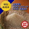 【ポイント10倍】【送料無料】広島県産ミルキークイーン 5kg(10kgお届け特別栽培米5kg×2【ゴールド袋】)5kgお買い上げで5kgプレゼント