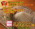 【ポイント20倍】【送料無料】広島県産ミルキークイーン 5kg(10kgお届け)☆【当店最高級/一流品ゴールド袋】お買上で5kg増量プレゼント付