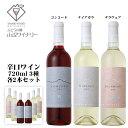 山辺ワイナリー 辛口ワイン 6本セット[ 3種 各2本 ] / コンコード ナイアガラ デラウェア 720ml 日本ワイン 長野県産 赤白ワインセット
