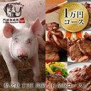 福袋 2021 食品 格之進 THE 肉箱(白金豚コース)焼肉 ハンバーグ ギフト 国産黒毛和牛