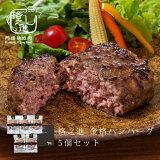 格之進 金格 ハンバーグ 5個セット 冷凍 ギフト 送料無料 無添加 国産牛 白金豚