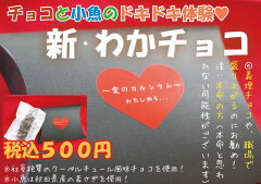 『新わかチョコ♪』佃煮+チョコ=おもしろチョコ♪おやつ・おつまみにとうぞ!おもしろバレンタイン・ホワイトデー