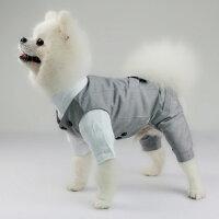 ペットスーツセットドッグ犬服タキシードベストシャツ2点セットお買い得グレー結婚式フォーマルリングドッグ記念日お祝い男の子プレゼント