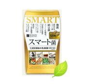 SVELTYスマート菌120粒(約20日〜30日分)