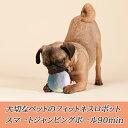アドメイト ハイバウンドボール イエロー/ブルー 【犬のおもちゃ/犬用おもちゃ】【犬用品/ペット・ペットグッズ/ペット用品/オモチャ】【Add.Mate】