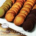 【送料無料】訳ありプレミアム割れクッキー 8種(2枚×24袋入)バター...