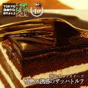 情熱と誘惑のザッハトルテ(ミルク/ビター)チュベ・ド・ショコラ【チョコケーキ】(割れチョコ クーベルチュール)の商品画像