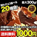 【お試し割れチョコ1000円ポッキリ】チュベ・ド・ショコラの割れチョコを20種類から選べる/ラッピン...