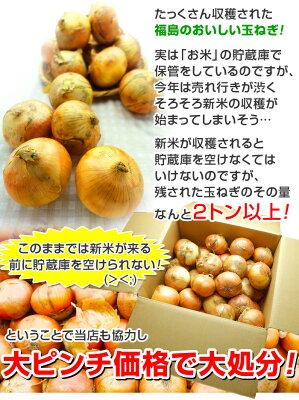 福島県産玉ねぎ5kg【送料無料】