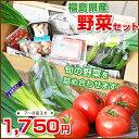 トマト、しいたけ、きゅうり、ネギ等の新鮮野菜をお届け。おすそわけにも福島県産の野菜を応援...