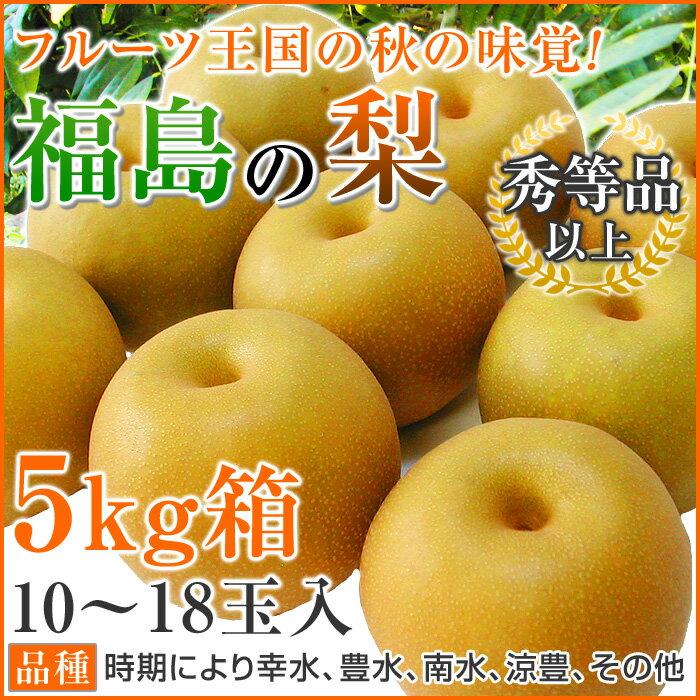送料無料 福島の梨 5kg箱 10〜18玉入【品種】時期により 幸水 豊水 南水 涼豊 その他【等級】秀等品以上※店側でクーポンの後付けは出来ませんので、ご使用忘れにご注意ください。
