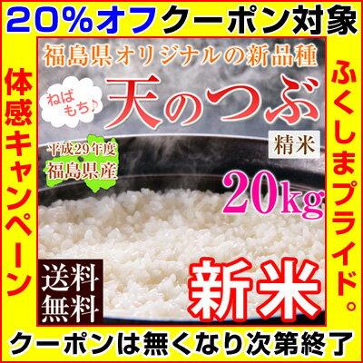 平成29年度福島県産天のつぶ白米