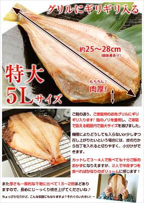 お魚グリルにギリギリ入る特大5Lサイズ!