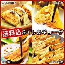 ふくしまギョーザ4種セット(肉餃子12ヶ、ピリ辛ぎょうざ12ヶ、ニンニクギョウザ12ヶ、ニラ餃…