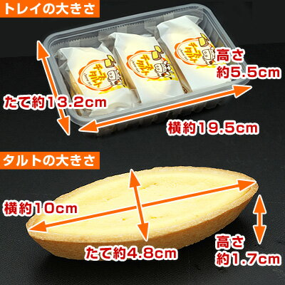 給食チーズタルトの大きさ