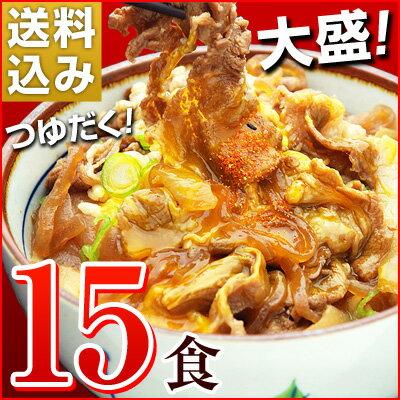 大盛りつゆだく!日東ベストの牛丼DX【185g×15パック】送料込み