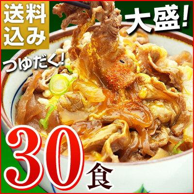 大盛りつゆだく!日東ベストの牛丼DX【185g×30パック】送料込み