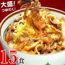 日東ベストの牛丼DX【185g×15パック】 巣ごもり消費 お取り寄せ あす楽