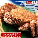 毛ガニ 【流氷の下で育った、3特堅蟹・姿毛がに 1尾あたり約570g 1尾 】 毛がに 毛蟹 堅蟹  ...