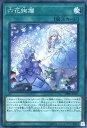 遊戯王 DBSS-JP023 スーパーレア 魔法 六花絢爛 【中古】【Sランク】