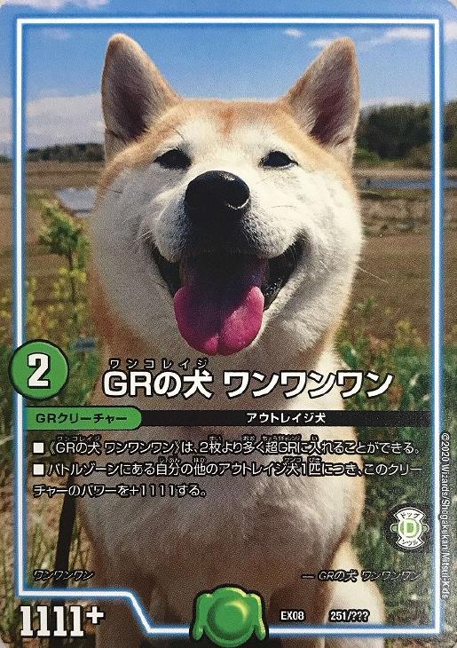 ファミリートイ・ゲーム, カードゲーム  DMEX08 251??? GR S