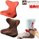 《クーポン配布中》 馬具マットプレミアムEX 日本製 クッション 椅子用 馬具座椅子 腰がラク 骨盤