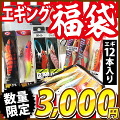 【2016年度釣り福袋!】エギング福袋!【エギ12本入り!】