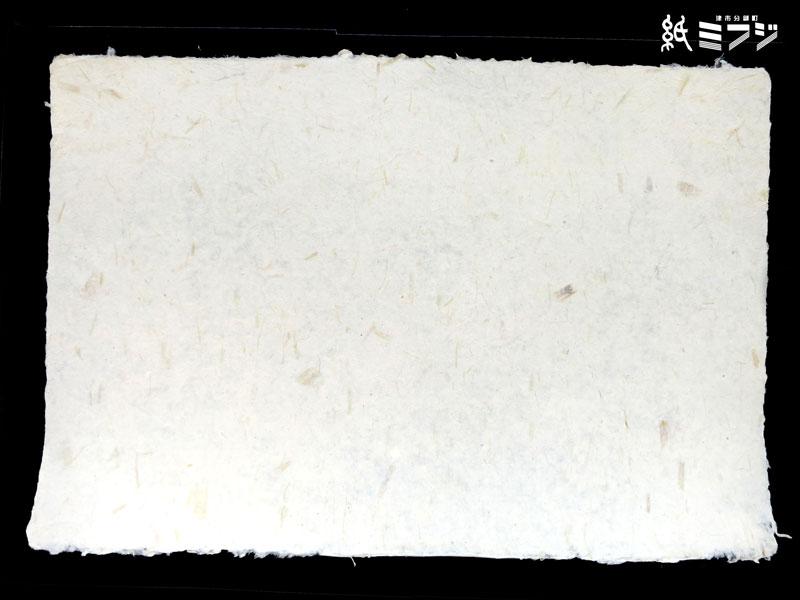 【素材入り和紙】アバカ紙 サラゴ・バナナの茎OGS#3