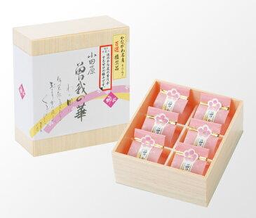 曽我の華 6個入り【ご贈答用】【ギフト用】塩分約6%八重桜のエキスを加えた梅干