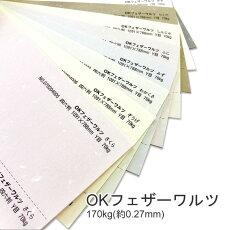 【特殊紙】OKフェザーワルツ170kg(0.27mm)選べる9色【ファンシーペーパー印刷用紙】