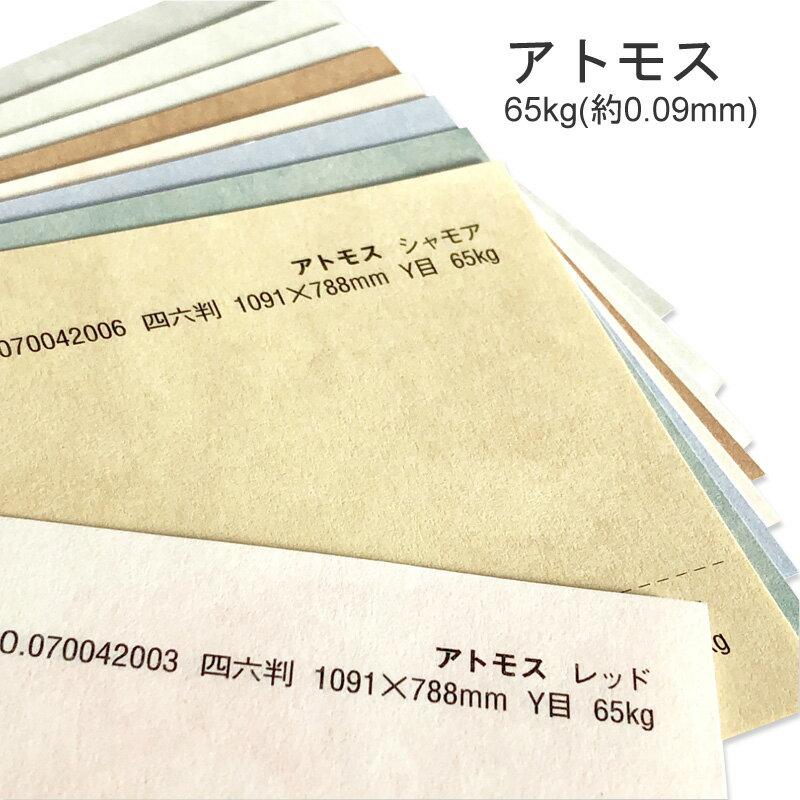 コピー用紙・印刷用紙, 印刷用カラーペーパー  65kg(0.09mm) A4 100 9