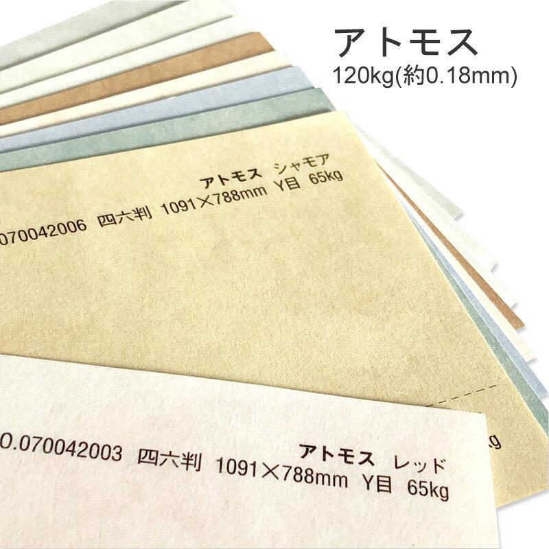 コピー用紙・印刷用紙, 印刷用カラーペーパー  120kg(0.18mm) A4 50 9