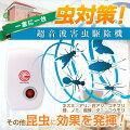 ゴキブリ駆除や虫対策に!ペットがいても安心して使える、おすすめ防虫グッズが知りたい!