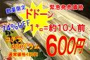 【臨時発売】数量限定600円本格生うどん1キロ(無地袋入り)