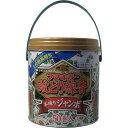 蚊取り線香 蚊とり線香 本練りジャンボ 50巻缶入 線香皿付き フマキラー
