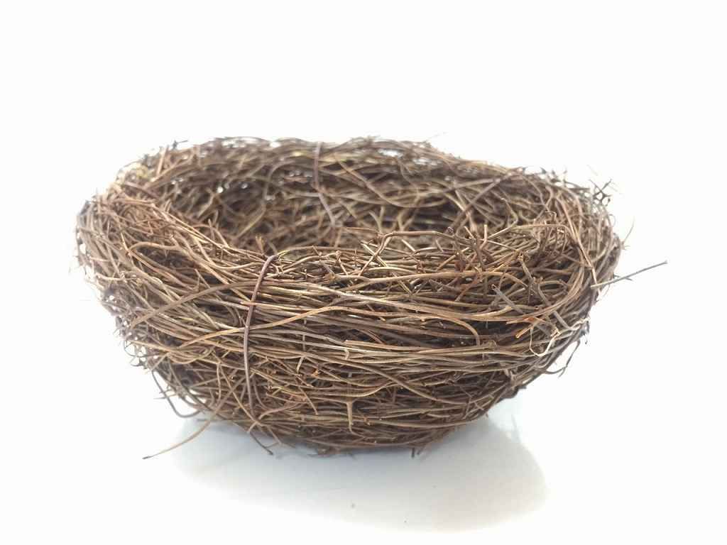 【楽天市場】アラタ 小鳥の皿巣(1コ入) | 価格比較 -  …