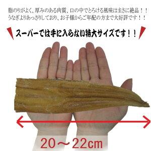 【送料無料】生食用天使の海老高級料亭刺身用ニューカレドニア産養殖世界最高グレード1kg約30尾前後入り
