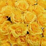 造花黄色いバラ