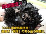『放射能測定済み』 安心安全の日本産落葉使用! 金の腐葉土【40L】《代引き手数料無料》02P03Dec16