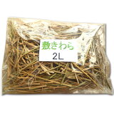 敷きわら(香川県産)マルチング・乾燥防止・装飾用 2L(長さ約65cmの一般的プランター1つ分)『放射能測定済み』【無農薬のお米の稲わら】