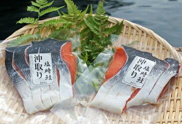 北洋沖獲り時鮭(5切入り)【同梱可能】【通販、販売】【10P23Apr16】