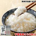 新米 令和3年産 千葉県産 こしひかり 25kg(5kgx5袋) ■玄米 五分搗き 七分搗き 白米 精米方法選べます