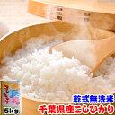 新米 令和元年産 無洗米 千葉県 こしひかり 5kg お米 ギフト
