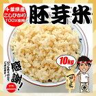 千葉県産 こしひかり 胚芽米 10kg(5kgx2袋) ※ヤマト運輸指定の場合は追加送料が掛かる地域があります。お米 熨斗紙 名入れ お祝い ギフト対応