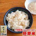 新米 令和元年産 千葉県産 こしひかり 胚芽米 10kg (5kgx2袋) 送料無料の地域もございます! お米