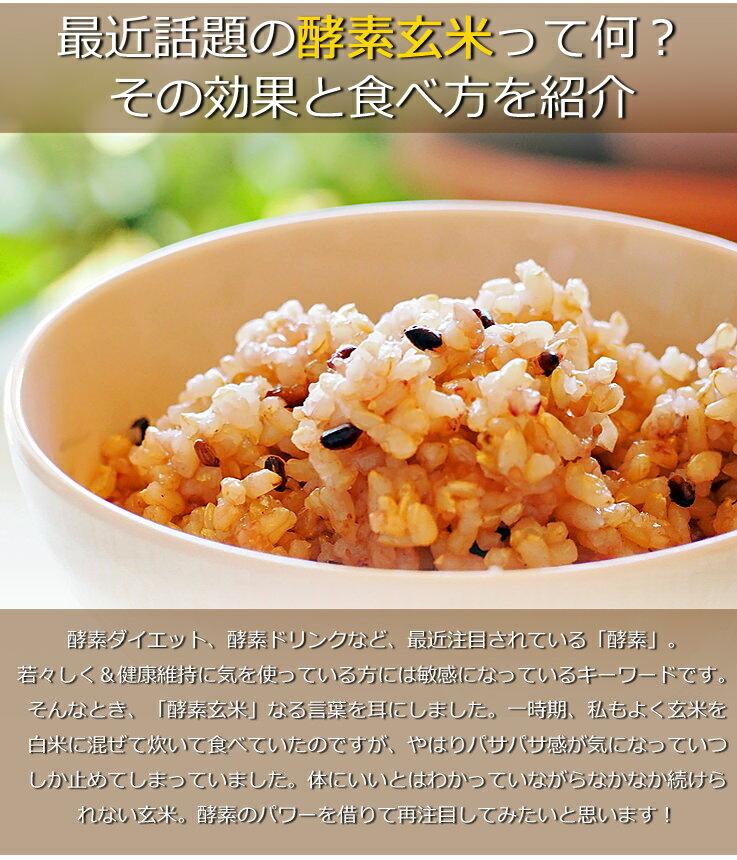 30年産 千葉県産 ミルキークイーン 玄米 5kg 玄米食でも安心!再調整済み の地域もございます! お米
