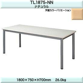ミーティングテーブル【TAC】TL9090-NNナチュラルW1800×D750×H700