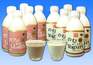 【送料無料サマーギフト】函館牛乳カフェラテ・飲むヨーグルトセット(各5本)