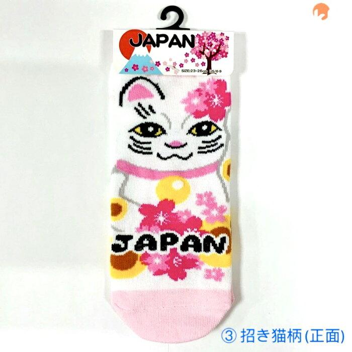 JAPANSOCKS招き猫柄(正面)